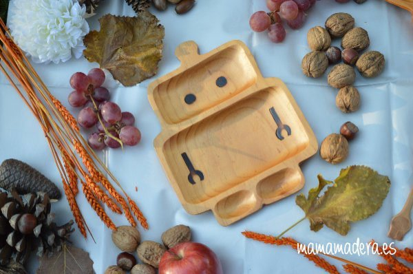 Plato Madera Eco-Friendly Robot 2