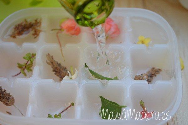 ¿Nos refrescamos con cubitos de hielo? 8