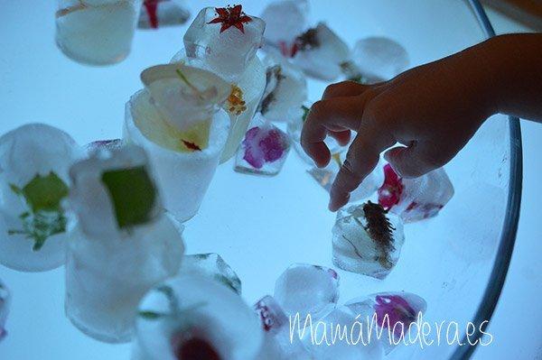 ¿Nos refrescamos con cubitos de hielo? 3
