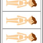 El cuerpo humano en la caja de luz 4