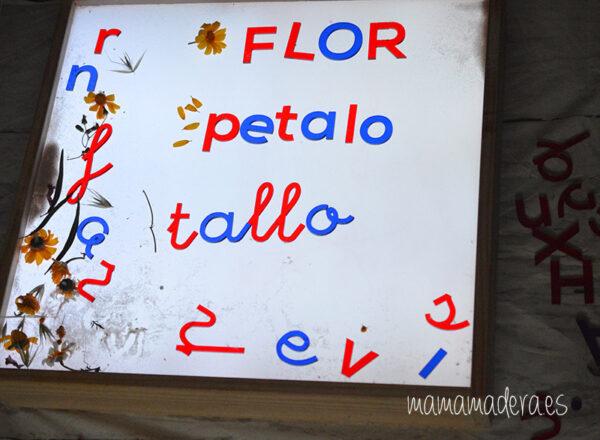 Alfabeto montessori metacrilato 1